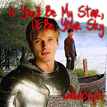 Cover image for If You'll Be My Star, I'll Be Your Sky