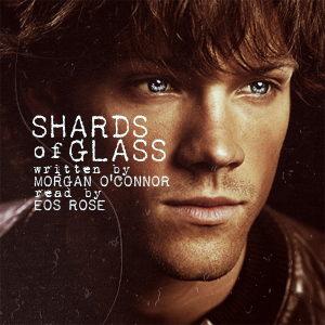 Cover image for Shards of Glass
